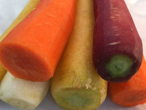 Colorful carrots Royalty Free Stock Photos