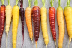 Carrots. Colorful carrots on a gray ceramic background Royalty Free Stock Photography