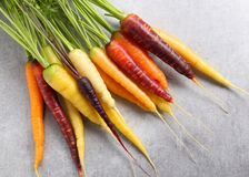 Carrots. Colorful carrots on a gray ceramic background Stock Images