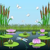 Colorful cartoon background with pond inhabitants and plants. Stock Images