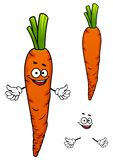 Colorful cartoon carrot vegetable character Stock Images