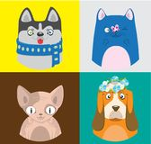Colorful cartoon cats and dogs collection. Vector pattern of pets in bright squares.  Stock Image