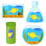 Colorful cartoon fish elements set. Simple supplies for domestic animal. Pet care themed vector illustration for icon, sticker, patch, label, badge Royalty Free Stock Image