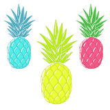 Colorful cartoon pineapples Royalty Free Stock Image
