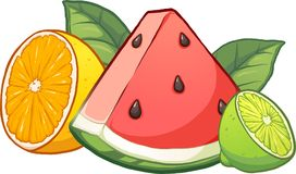 Colorful cartoon tropical fruits. Cartoon tropical fruits. Vector clip art illustration with simple gradients. Each fruit on a separate layer Royalty Free Stock Images