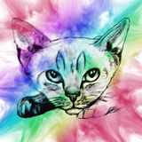 Colorful cat in abstract ornate vector illustration