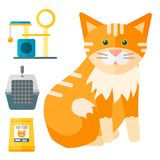 Colorful cat accessory cute vector animal icons pet equipment. Colorful cat accessory and cute vector animal icons collection pet equipment elements food Stock Images