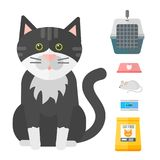 Colorful cat accessory cute vector animal icons pet equipment. Colorful cat accessory and cute vector animal icons collection pet equipment elements food stock illustration
