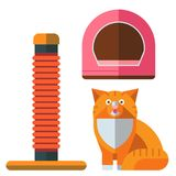 Colorful cat accessory cute vector animal icons pet equipment. Colorful cat accessory and cute vector animal icons collection pet equipment elements food Royalty Free Stock Photo