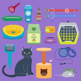 Colorful cat accessory cute vector animal icons pet equipment food domestic feline illustration. Colorful cat accessory and cute vector animal icons collection vector illustration