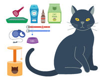 Colorful cat accessory cute vector animal icons pet equipment food domestic feline illustration. Royalty Free Stock Images
