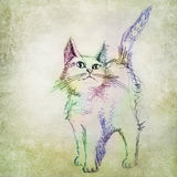 Colorful cat drawing Stock Images