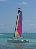 Colorful catamaran Royalty Free Stock Photography