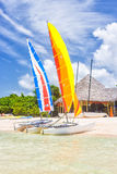 Colorful catamarans at a resort on a beach in Cuba Stock Photography