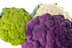 Colorful Cauliflower. A purple head of cauliflower close-up with green and white heads in the background Royalty Free Stock Photos