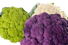 Free Colorful Cauliflower Royalty Free Stock Photos - 8990698