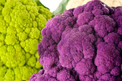 Colorful Cauliflower. A purple head of cauliflower close-up with green and white heads in the background Stock Photo