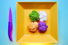 Colorful cauliflower and broccoli : purple, white, green, orange Royalty Free Stock Images