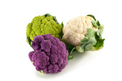 Colorful Cauliflower Heads. Purple, green and white heads of fresh cauliflower Stock Photography