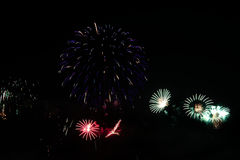 Colorful celebration fireworks. Stock Photos