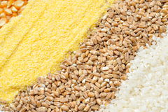 Colorful cereal seeds background Stock Photo