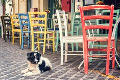 Colorful chairs of a restaurant terrace in a prdestrian street of the old town of Chania in Crete Greece. Colorful chairs of a restaurant terrace in a prdestrian Royalty Free Stock Images