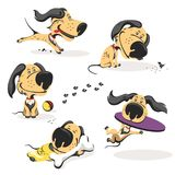 Colorful Character. Funny Little Dog in His Everyday Activity. royalty free illustration