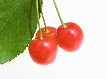 Colorful cherries stock photography