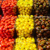 Colorful cherry tomatoes in plastic baskets Stock Photos