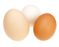 Colorful chicken eggs. Stock Photos