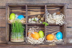Colorful chicken eggs, quail eggs, green wheat Stock Images