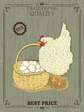 Colorful Chicken with eggs. Vector illustration. Vintage Royalty Free Stock Photo