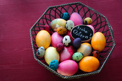 Colorful Chicken and Quail Eggs. Frohe Ostern (german) Greeting Royalty Free Stock Images