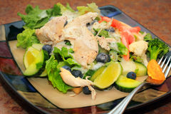 Colorful chicken salad Stock Image