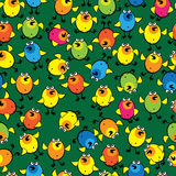 Colorful chickens on seamless pattern Royalty Free Stock Photos