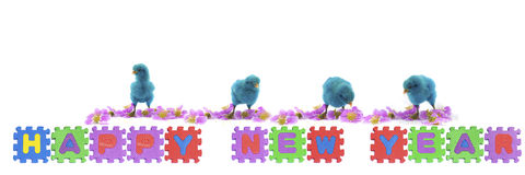Colorful of chicks on New Year 2015 Royalty Free Stock Photo