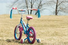 Colorful kid`s bicycle against spring lawn and trees. stock photos
