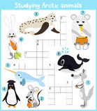 A colorful children's cartoon crossword, education game for children on the theme of studying Arctic animals living in the cold po Stock Image