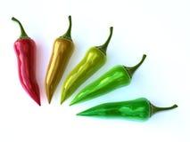 Colorful chili. Es isolated on white background Stock Image