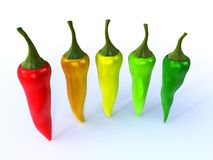 Colorful chili. Es isolated on white background Stock Photography