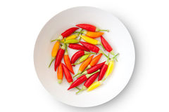 Colorful chili peppers plate isolated Royalty Free Stock Photo