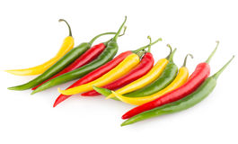 Colorful chili peppers Stock Photography