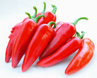 Colorful chilli pepper. Isolate on white background. Raw material for food or cooking stock images