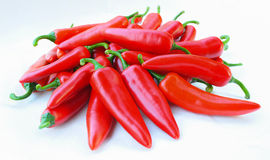 Colorful chilli pepper. Isolate on white background. Raw material for food or cooking Royalty Free Stock Images