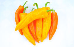 Colorful chilli pepper. Isolate on white background. Raw material for food or cooking Royalty Free Stock Photos