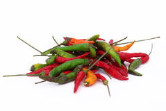 Colorful chilli peppers Stock Image