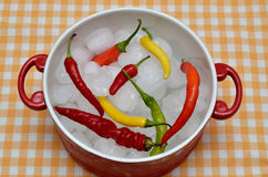 Colorful chilli peppers on ice in red casserole Royalty Free Stock Photography