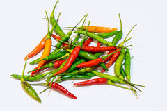 Colorful chilli Stock Photography