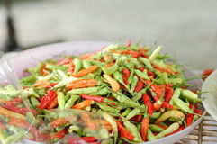 Colorful chillies Royalty Free Stock Photography