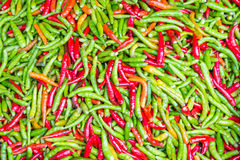 Colorful chillies for sale at market Royalty Free Stock Photos